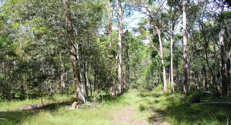 64 Hogan Road, Downsfield, QLD, 4570 - Image 2
