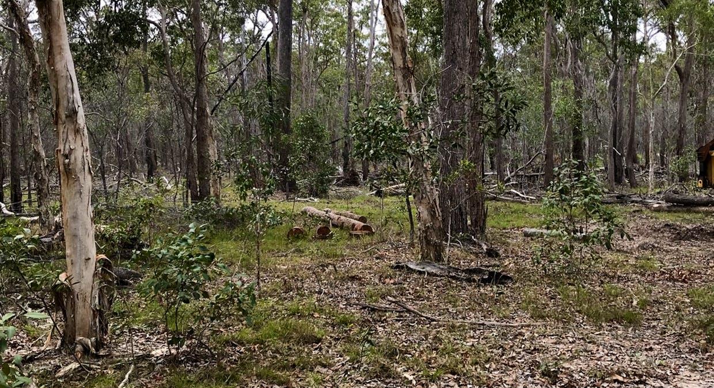 Lot 28 Peridge Road, Aldershot, QLD, 4650 - Image 13
