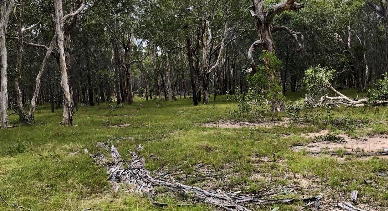 Lot 28 Peridge Road, Aldershot, QLD, 4650 - Image 15