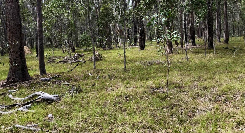 Lot 28 Peridge Road, Aldershot, QLD, 4650 - Image 17