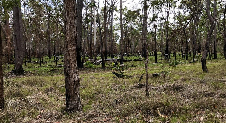 Lot 28 Peridge Road, Aldershot, QLD, 4650 - Image 7