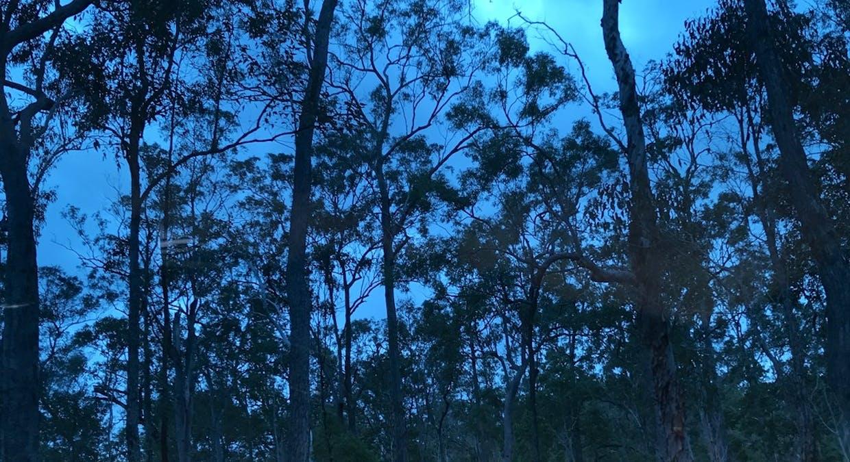 Lot 28 Peridge Road, Aldershot, QLD, 4650 - Image 1