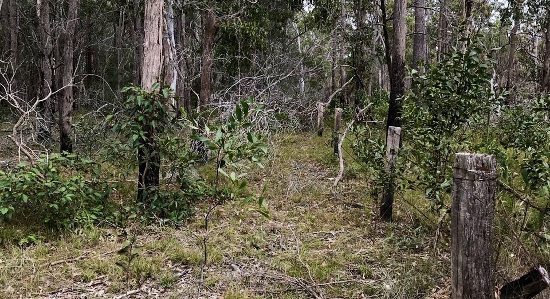 Lot 28 Peridge Road, Aldershot, QLD, 4650 - Image 5