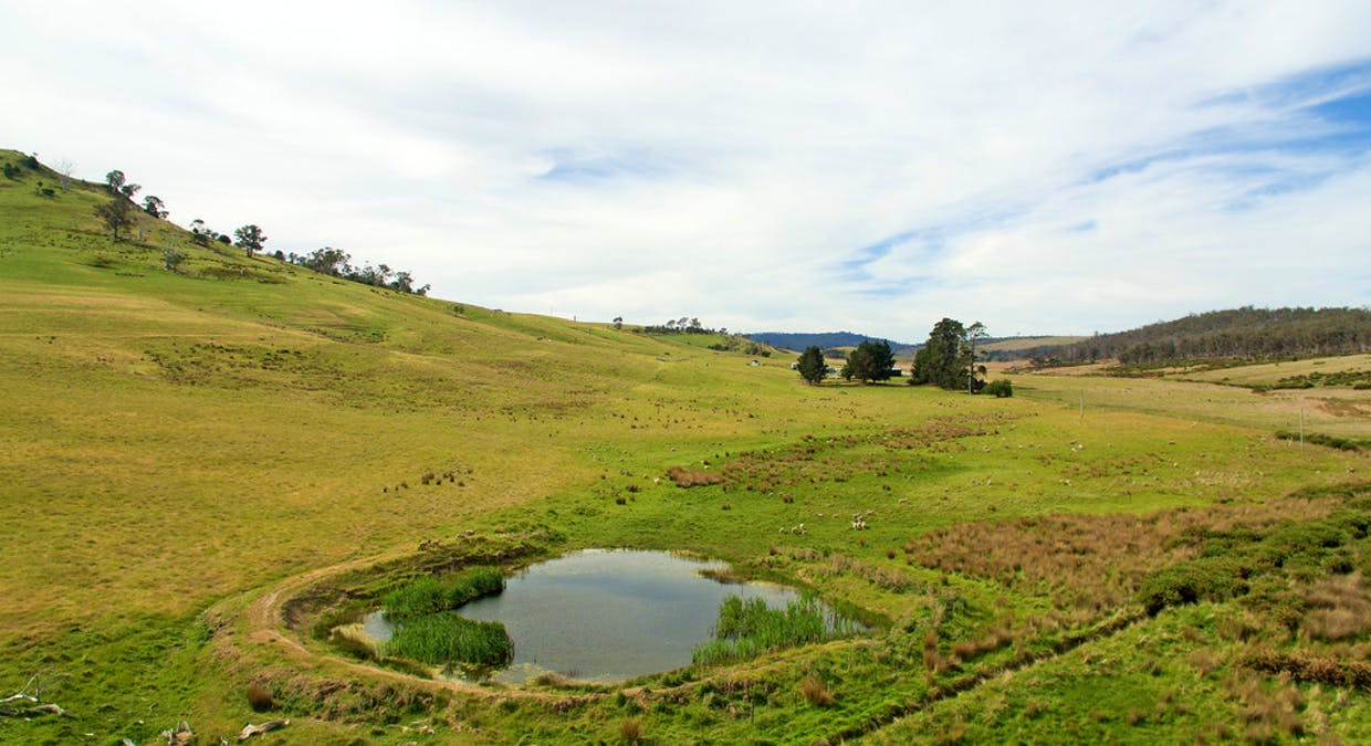 289 Rotherwood Road, Lower Marshes, TAS, 7030 - Image 13