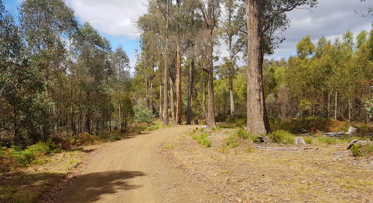 172 Mcguires Marsh Road, Osterley, TAS, 7140 - Image 4