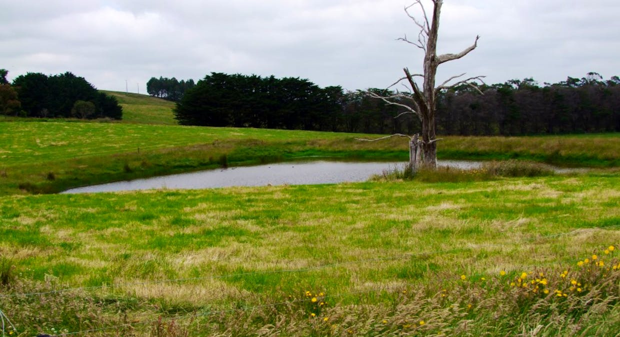 322 Buffalo-Stony Creek Road, Buffalo, VIC, 3958 - Image 9