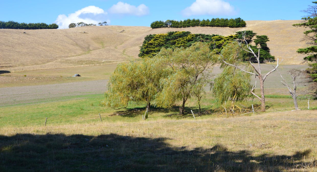 322 Buffalo-Stony Creek Road, Buffalo, VIC, 3958 - Image 12