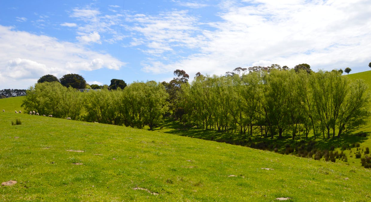 380 Ameys Track, Foster, VIC, 3960 - Image 26