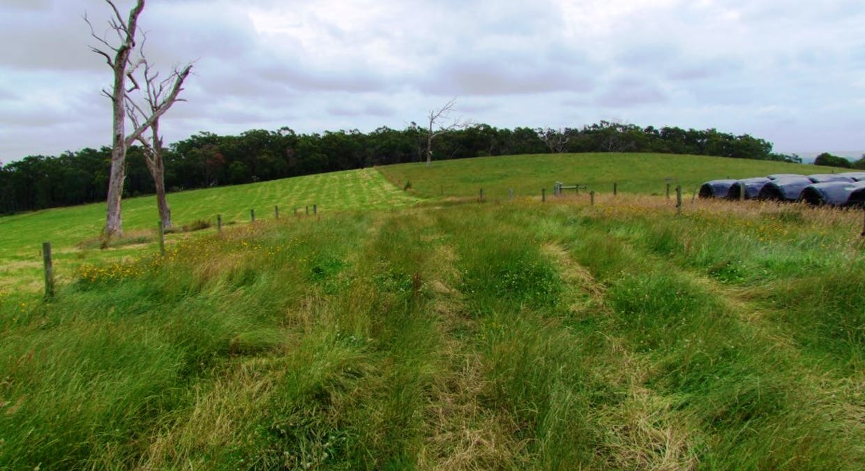 322 Buffalo-Stony Creek Road, Buffalo, VIC, 3958 - Image 10