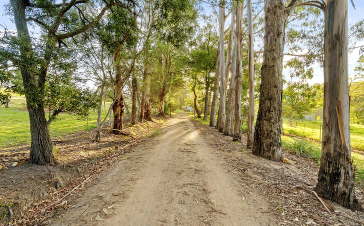 193 Casey Creek Road, Toorloo Arm, VIC, 3909 - Image 1