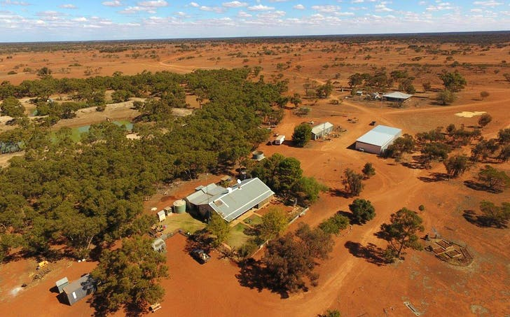 Rosewood Station, Wilcannia, NSW, 2836 - Image 1