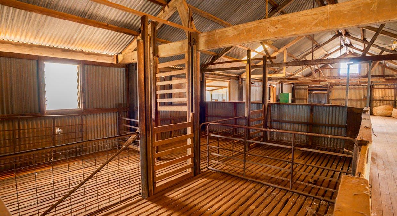 Eaglehawk Station, Broken Hill, NSW, 2880 - Image 8