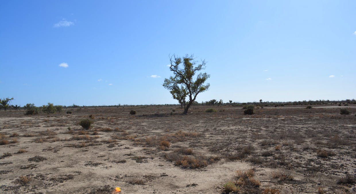 Lot 2 Corner Low Darling Rd And Cudmore Rd, Pomona, NSW, 2648 - Image 6