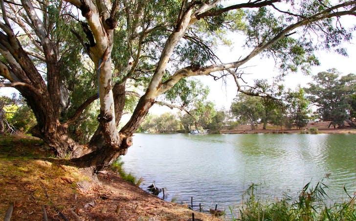 115-117 Wentworth Street, Wentworth, NSW, 2648 - Image 1