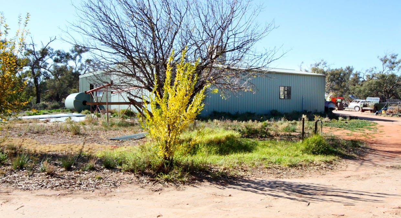 125 Cudmore Road, Wentworth, NSW, 2648 - Image 29