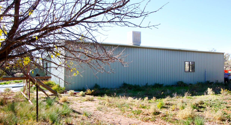 125 Cudmore Road, Wentworth, NSW, 2648 - Image 9