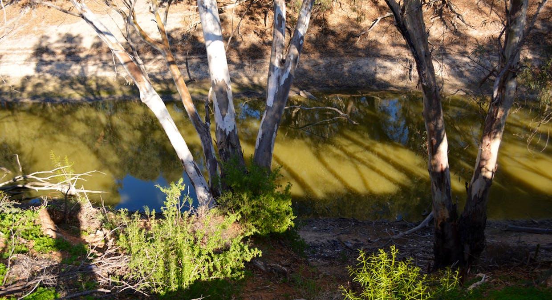 10-12 Tarcoola Street, Pooncarie, NSW, 2648 - Image 11