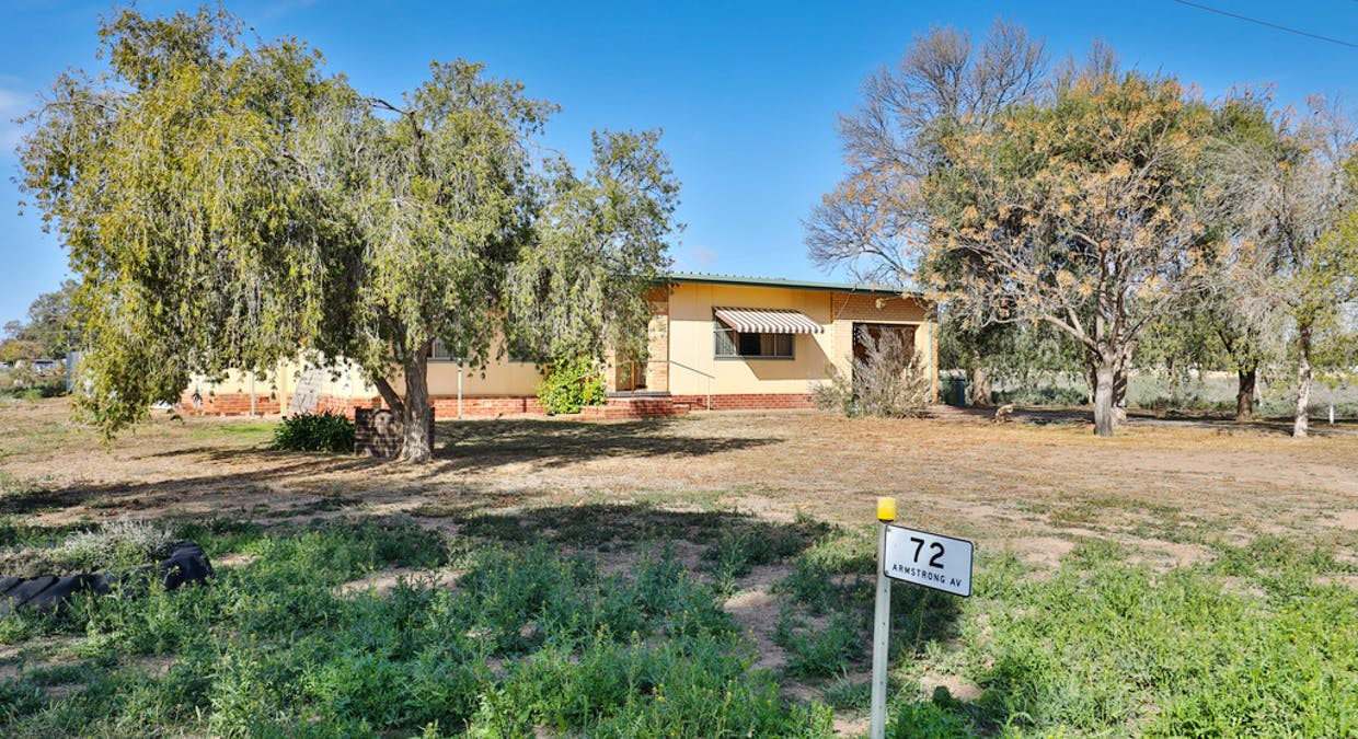 72 Armstrong Avenue, Wentworth, NSW, 2648 - Image 21