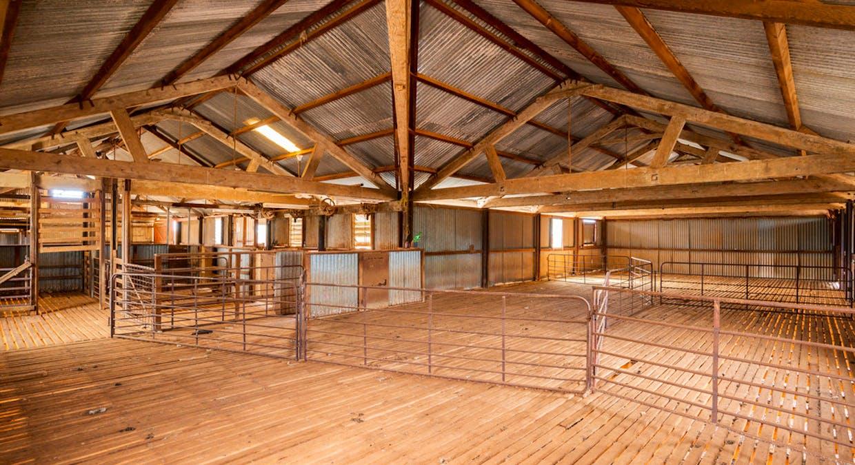 Eaglehawk Station, Broken Hill, NSW, 2880 - Image 10
