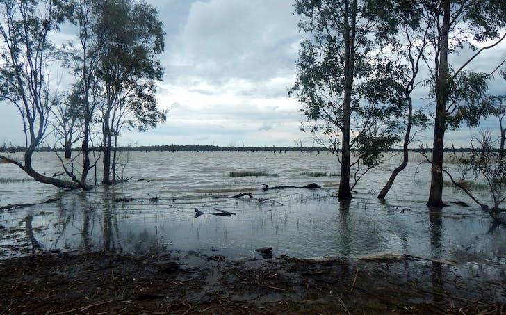 Lot 1, Sturt Highway (Dry Lake Road), Euston, NSW, 2737 - Image 1