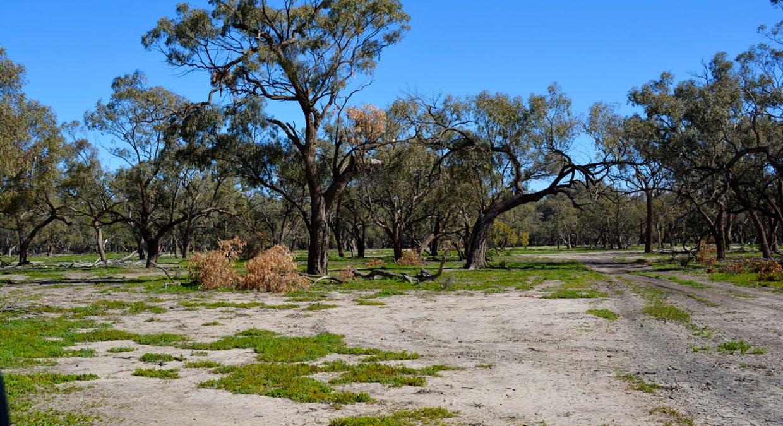 Lots 3, 4, 45, 46, 6 Pooncarie Menindee Road, Pooncarie, NSW, 2648 - Image 2