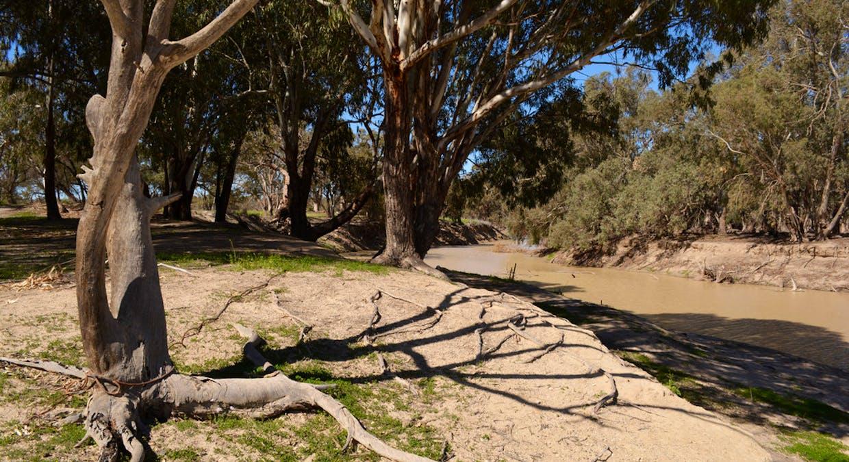 Lots 3, 4, 45, 46, 6 Pooncarie Menindee Road, Pooncarie, NSW, 2648 - Image 1