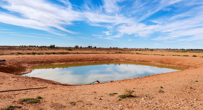 Eaglehawk Station, Broken Hill, NSW, 2880 - Image 22