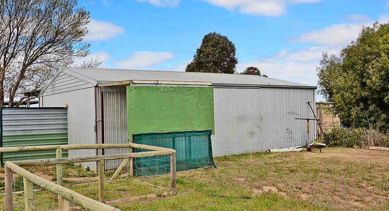 568 Pomona Road, Pomona, NSW, 2648 - Image 11