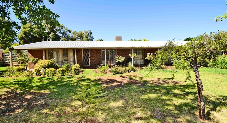 72 Murray Street, Wentworth, NSW, 2648 - Image 3