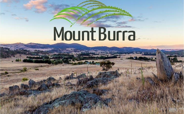 Lot 208 Mount Burra, Burra, NSW, 2620 - Image 1