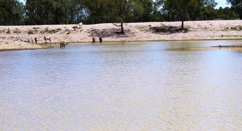 Killarney, Augathella, QLD, 4477 - Image 15