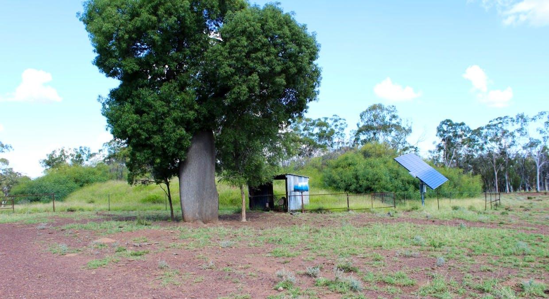Mt Maria/dulbydilla Aggregation, Morven, QLD, 4468 - Image 15