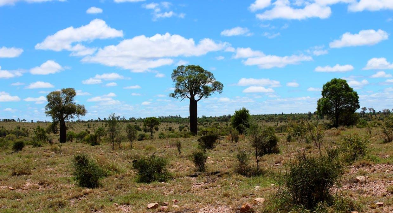 Killarney, Augathella, QLD, 4477 - Image 17