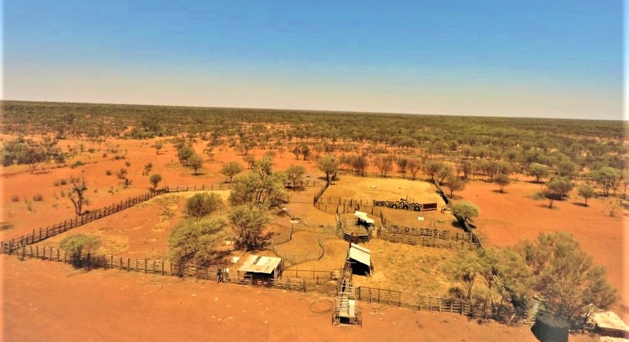 Gooyea Station, Quilpie, QLD, 4480 - Image 11