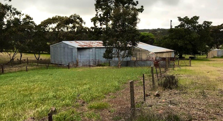 1339 Ngapala Road, Ngapala, SA, 5374 - Image 2