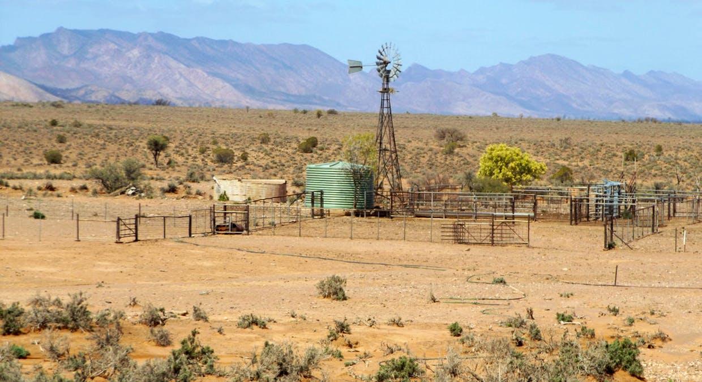 - Moolooloo Station, Moolooloo, SA, 5730 - Image 13
