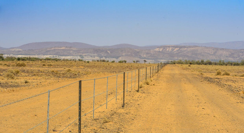 96 Wertaloona Road, Wertaloona, SA, 5732 - Image 13