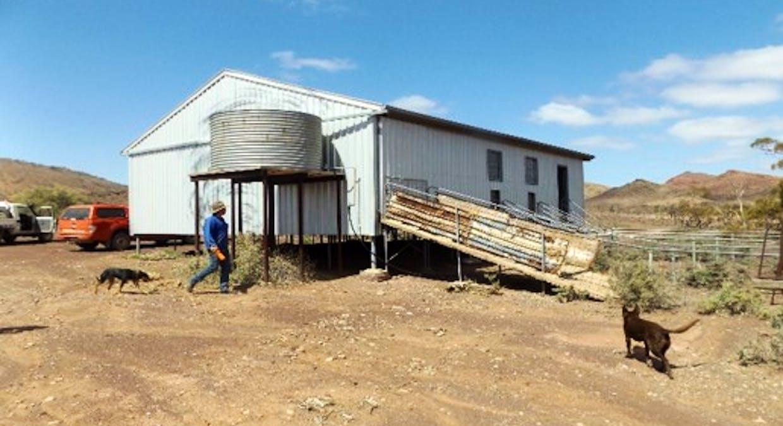 - Moolooloo Station, Moolooloo, SA, 5730 - Image 35