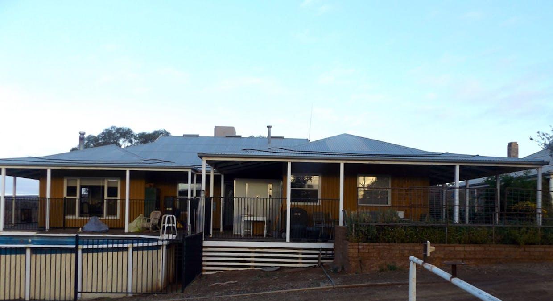 - Moolooloo Station, Moolooloo, SA, 5730 - Image 32