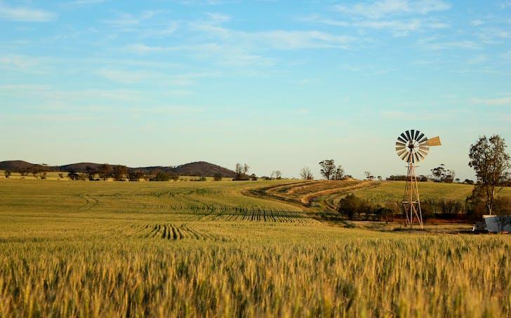 1286 Buckleboo Hundred Line Road, Kimba, SA, 5641 - Image 1