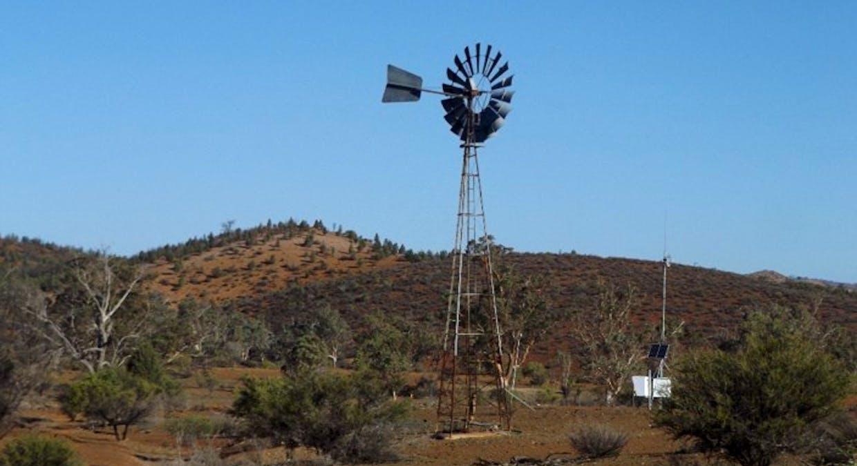 - Moolooloo Station, Moolooloo, SA, 5730 - Image 28