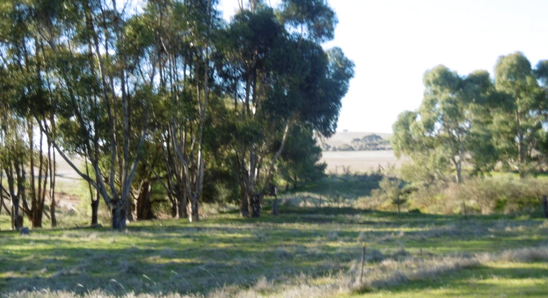 322 Harvie Road, Appila, SA, 5480 - Image 18