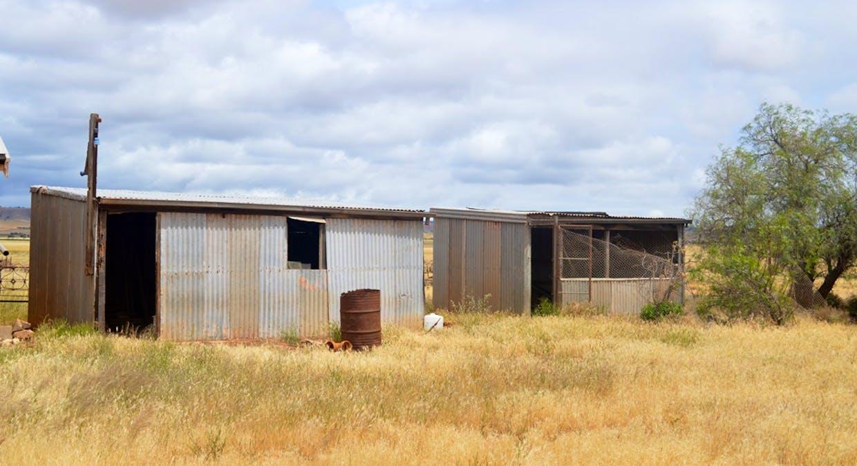 2547 Black Springs Road, Robertstown, SA, 5381 - Image 5