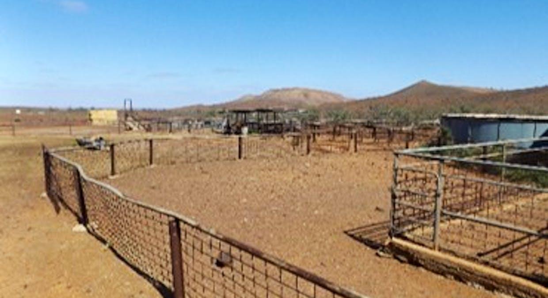 - Moolooloo Station, Moolooloo, SA, 5730 - Image 36