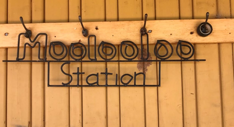 - Moolooloo Station, Moolooloo, SA, 5730 - Image 7