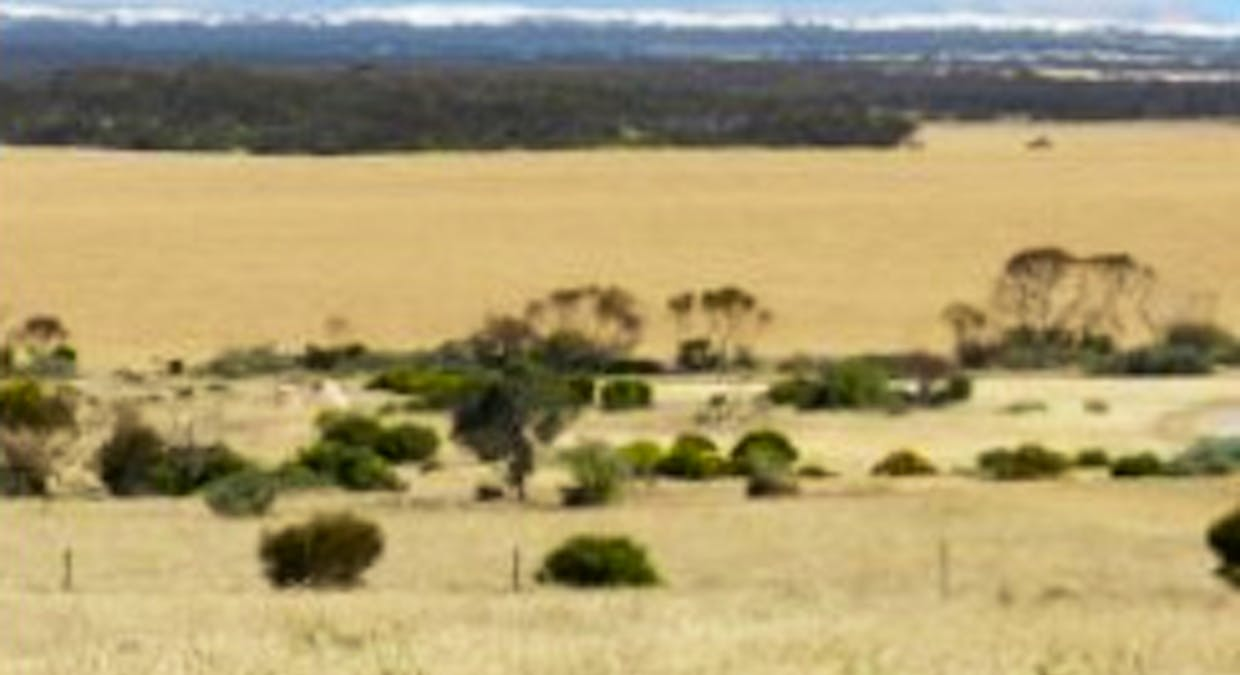 Section 20 Pipeline Road, Streaky Bay, SA, 5680 - Image 4