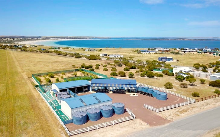 3 Ferret Place, Perlubie, Streaky Bay, SA, 5680 - Image 1