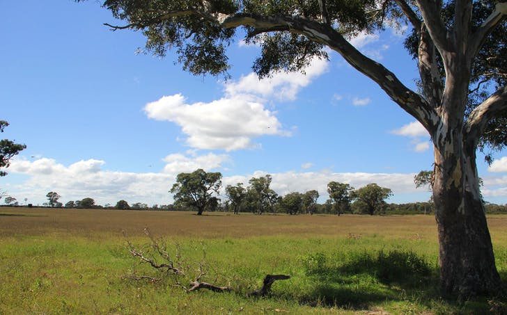 . Lower Cairnbrook Rd, Glengarry, VIC, 3854 - Image 1