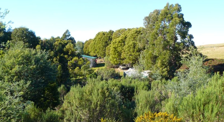 Lot 1 Lookout Road, Port Arthur, TAS, 7182 - Image 5