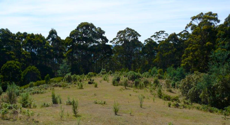 Lot 1 Lookout Road, Port Arthur, TAS, 7182 - Image 6
